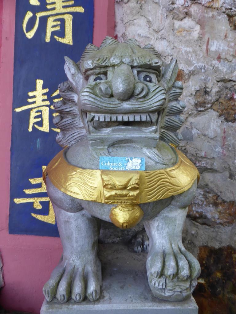 Les chouettes en Chine