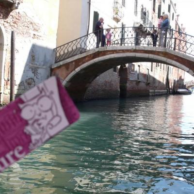 Les chouettes à Venise