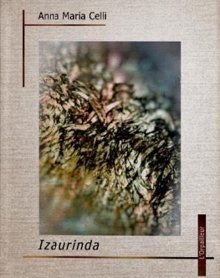 Souscription izaurinda2